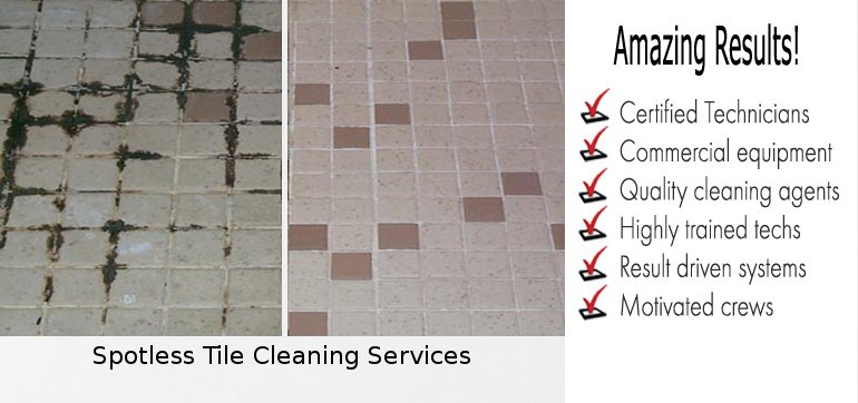 Tile Cleaning Shallow Inlet
