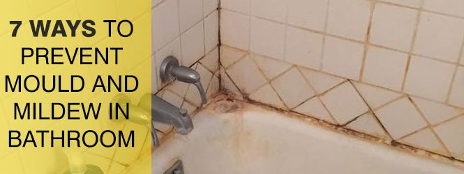 Prevent Mold & Mildew in Bathroom Melbourne