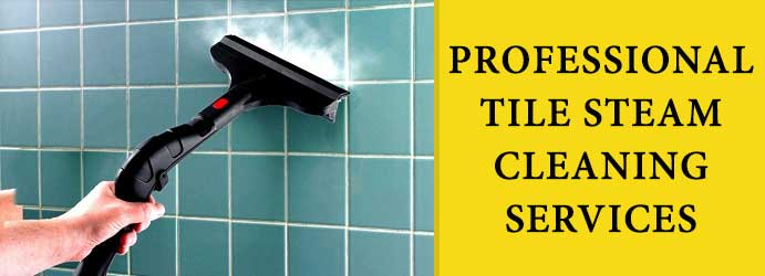 Tile Steam Cleaning Mount Pleasant