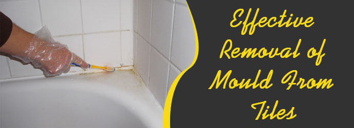 Removal of Mould From Tiles