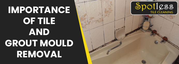 Tile and Grout Mould Removal