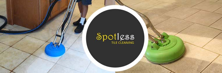 Professional Tile and Cleaning