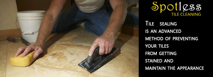 Tile Sealing Sylvaterre