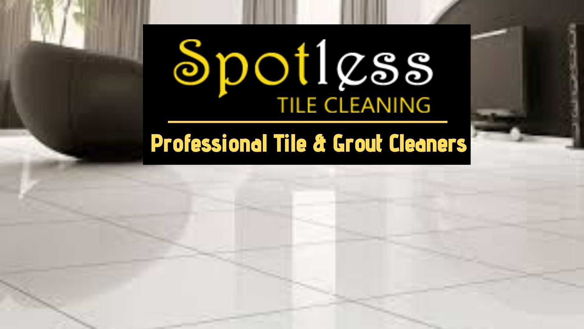 Professional Tile Cleaner